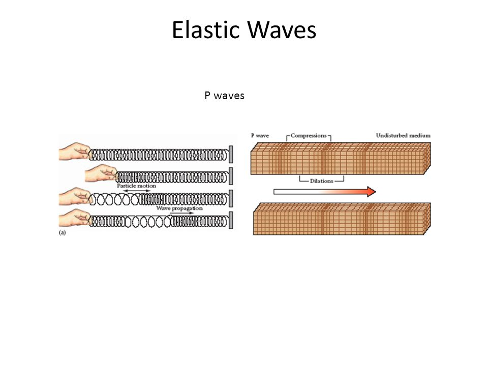 Elastic Waves P waves