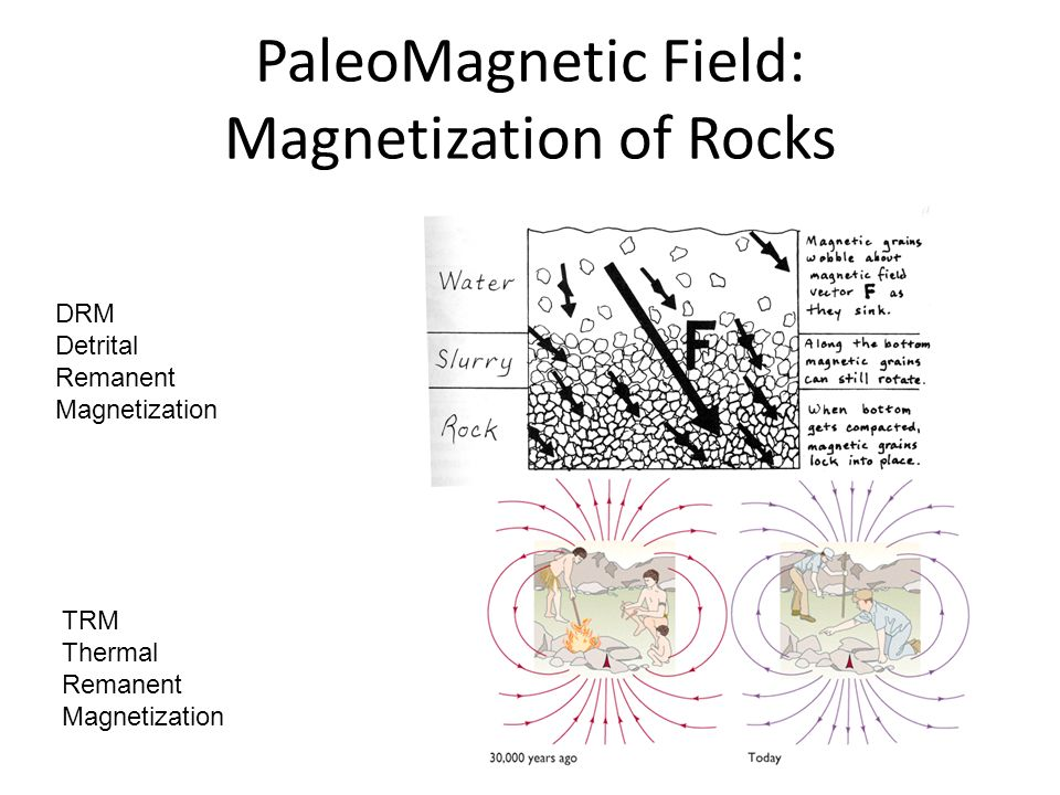 PaleoMagnetic Field: Magnetization of Rocks DRM Detrital Remanent Magnetization TRM Thermal Remanent Magnetization