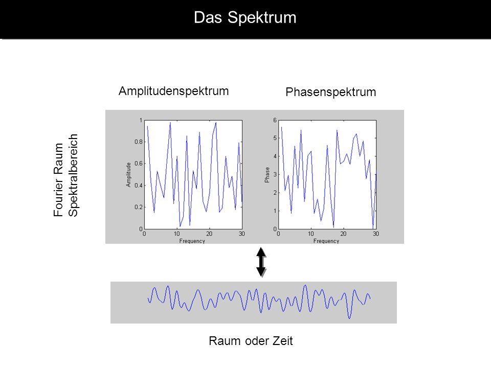 Das Spektrum Amplitudenspektrum Phasenspektrum Fourier Raum Spektralbereich Raum oder Zeit