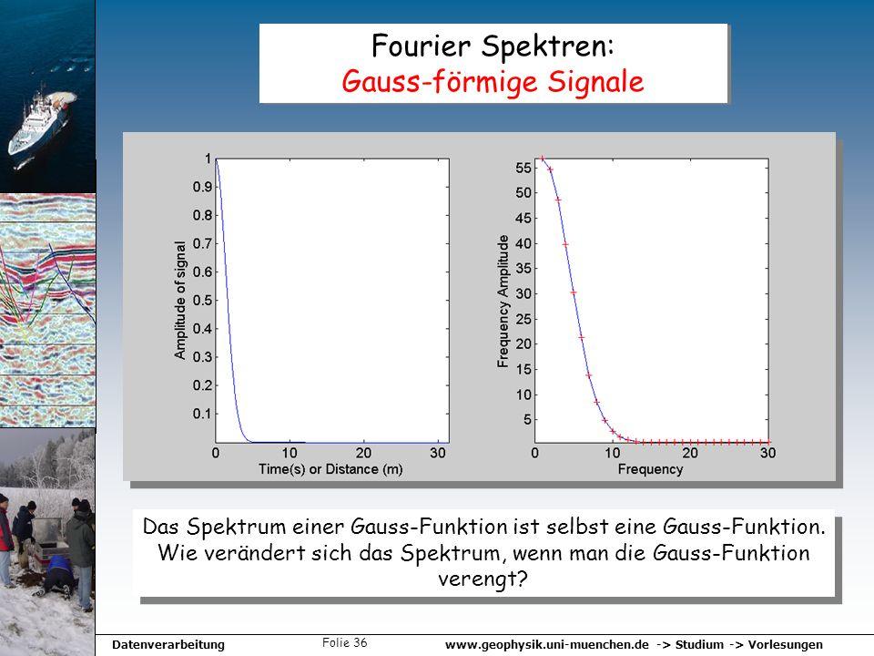 www.geophysik.uni-muenchen.de -> Studium -> VorlesungenDatenverarbeitung Folie 36 Fourier Spektren: Gauss-förmige Signale Das Spektrum einer Gauss-Fun