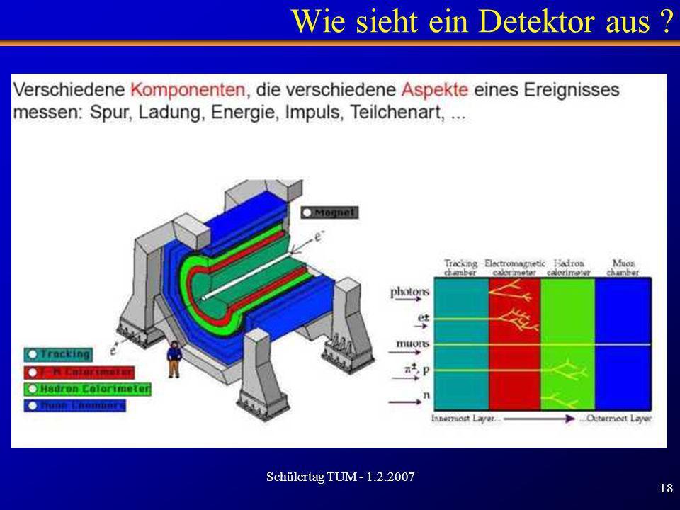 Schülertag TUM - 1.2.2007 18 Wie sieht ein Detektor aus ?