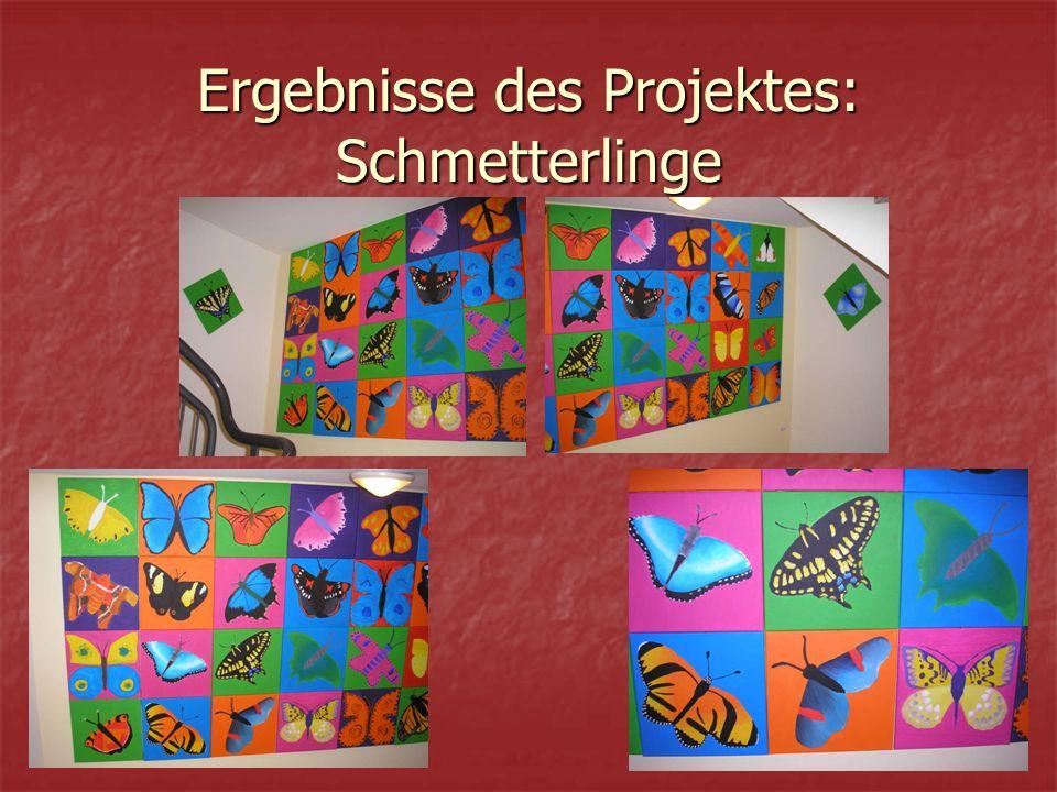 Ergebnisse des Projektes: Schmetterlinge
