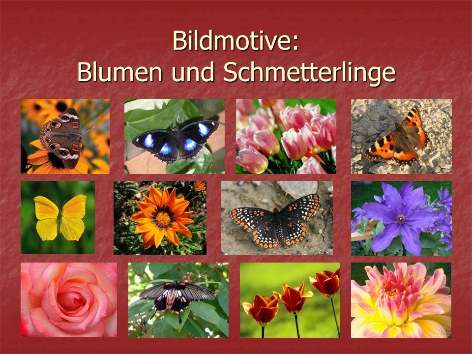 Bildmotive: Blumen und Schmetterlinge