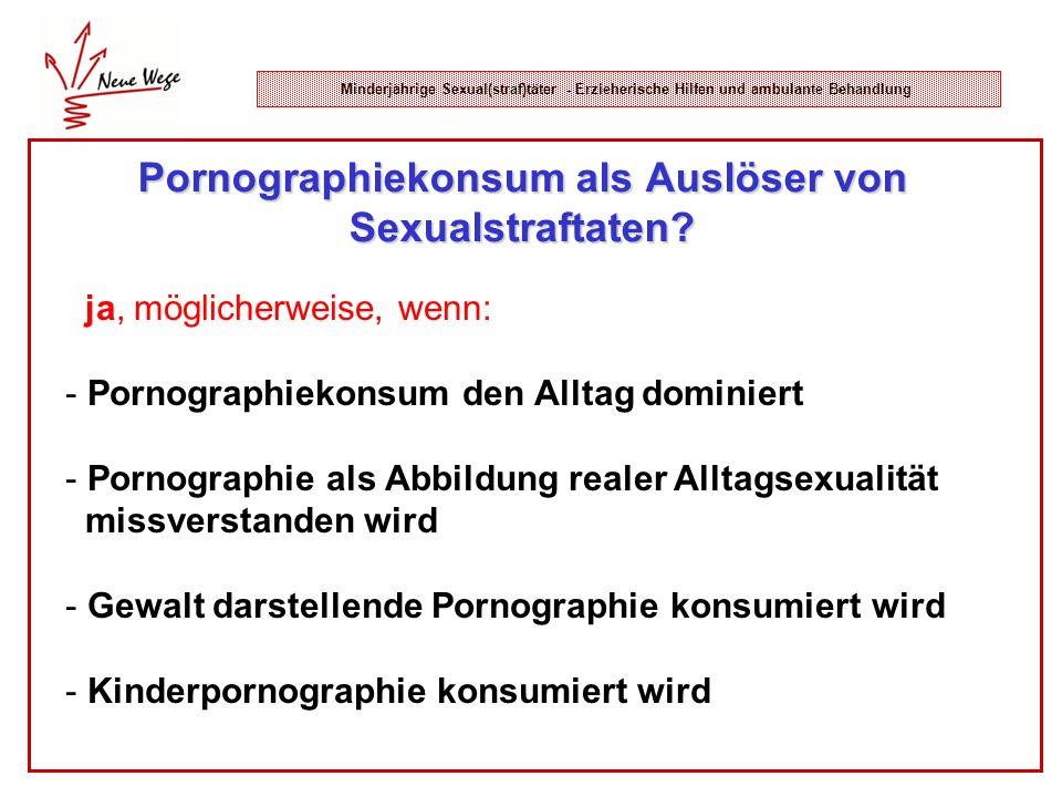 Minderjährige Sexual(straf)täter - Erzieherische Hilfen und ambulante Behandlung Pornographiekonsum als Auslöser von Sexualstraftaten? ja, möglicherwe