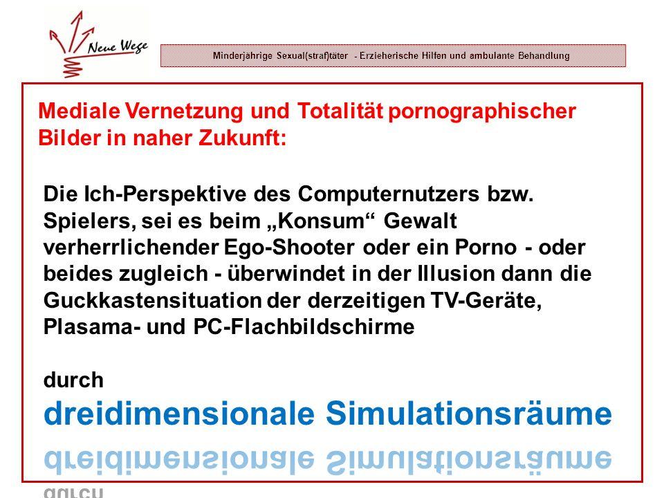 Minderjährige Sexual(straf)täter - Erzieherische Hilfen und ambulante Behandlung Mediale Vernetzung und Totalität pornographischer Bilder in naher Zuk