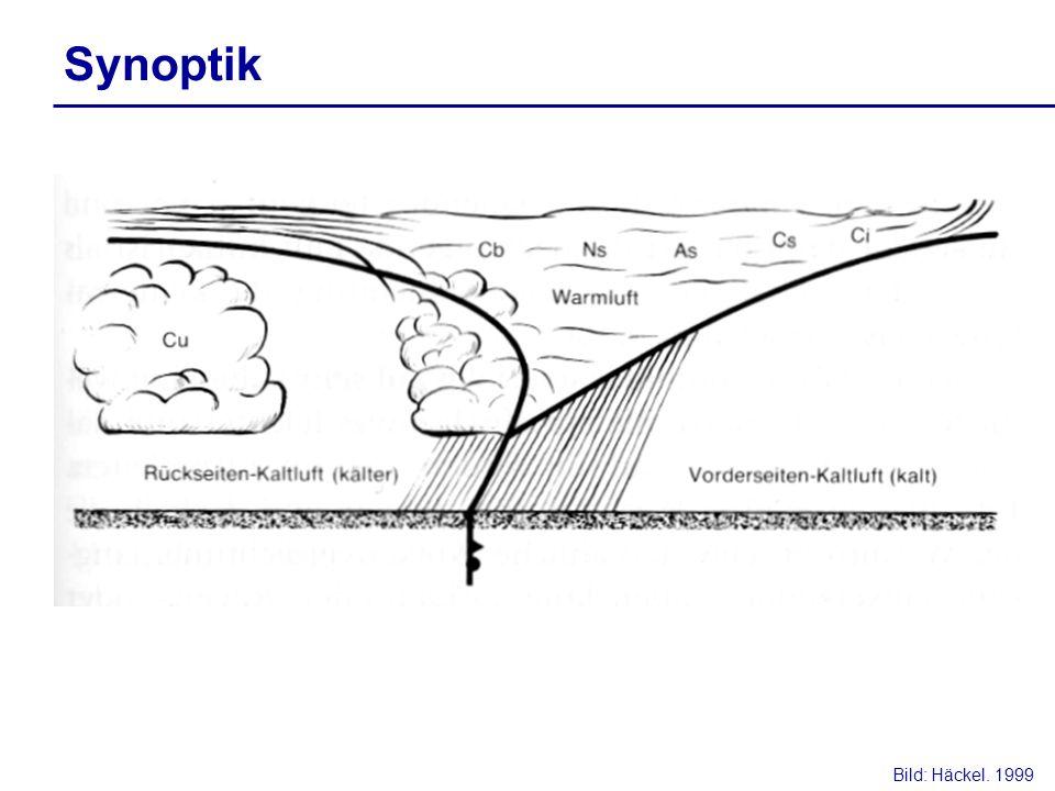 Synoptik Bild: Häckel. 1999