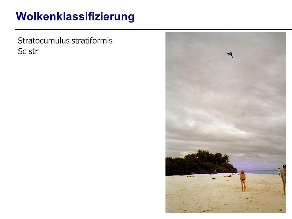 Wolkenklassifizierung Stratocumulus stratiformis Sc str