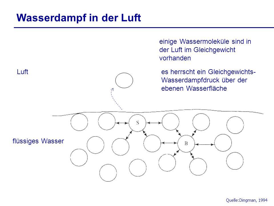 Quelle:Dingman, 1994 flüssiges Wasser Luft einige Wassermoleküle sind in der Luft im Gleichgewicht vorhanden es herrscht ein Gleichgewichts- Wasserdam