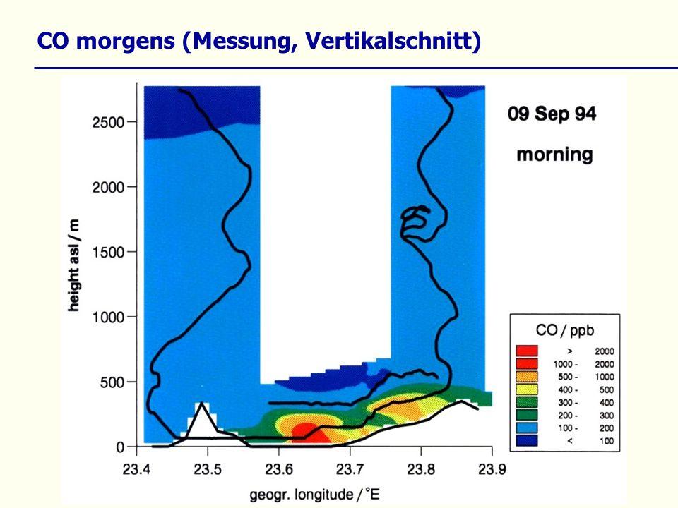 CO morgens (Messung, Vertikalschnitt)