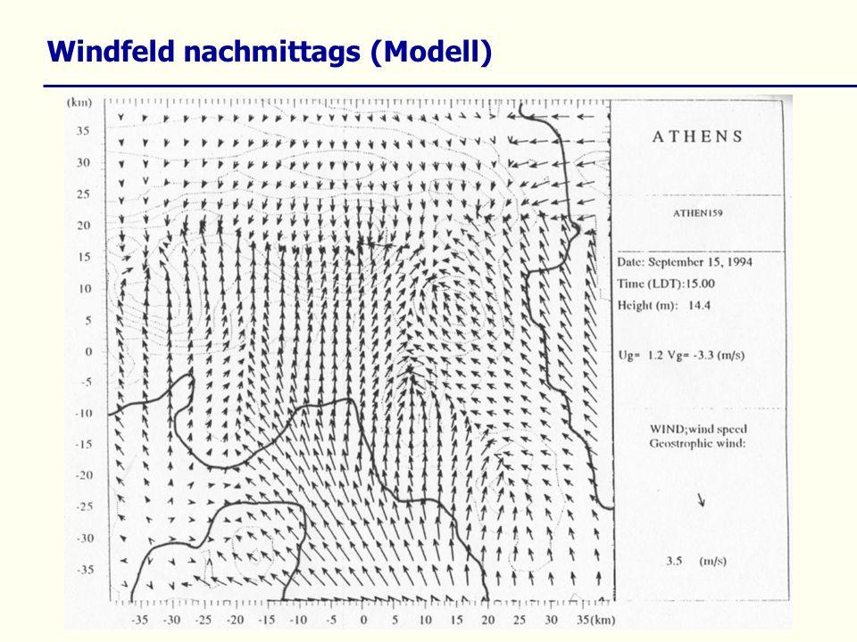 Windfeld nachmittags (Modell)