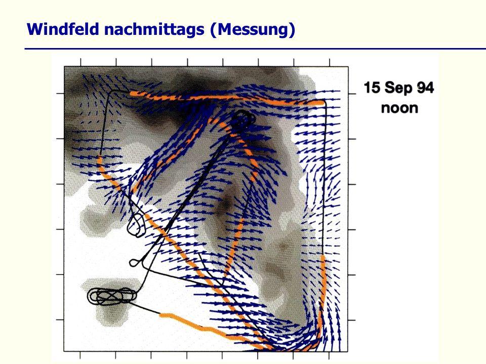 Windfeld nachmittags (Messung)
