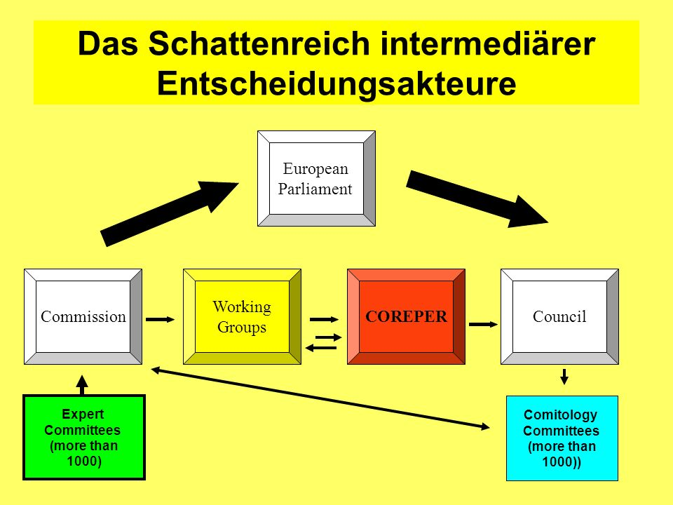 Das Schattenreich intermediärer Entscheidungsakteure Commission European Parliament COREPER Working Groups Council Expert Committees (more than 1000) Comitology Committees (more than 1000))
