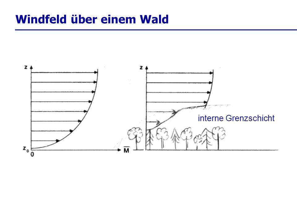 Windfeld über einem Wald interne Grenzschicht