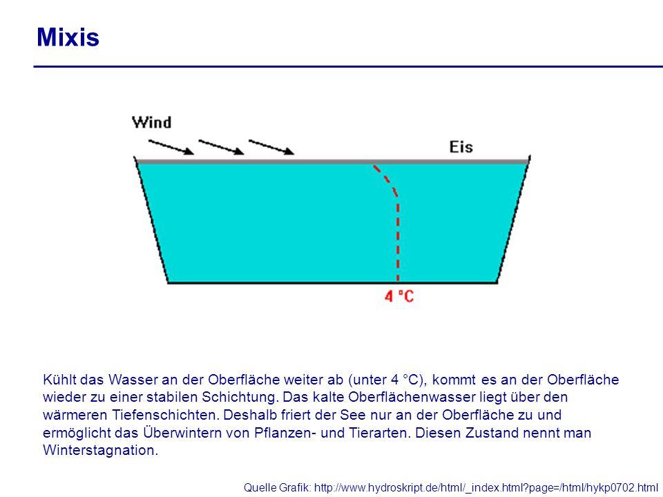 Mixis Kühlt das Wasser an der Oberfläche weiter ab (unter 4 °C), kommt es an der Oberfläche wieder zu einer stabilen Schichtung. Das kalte Oberflächen