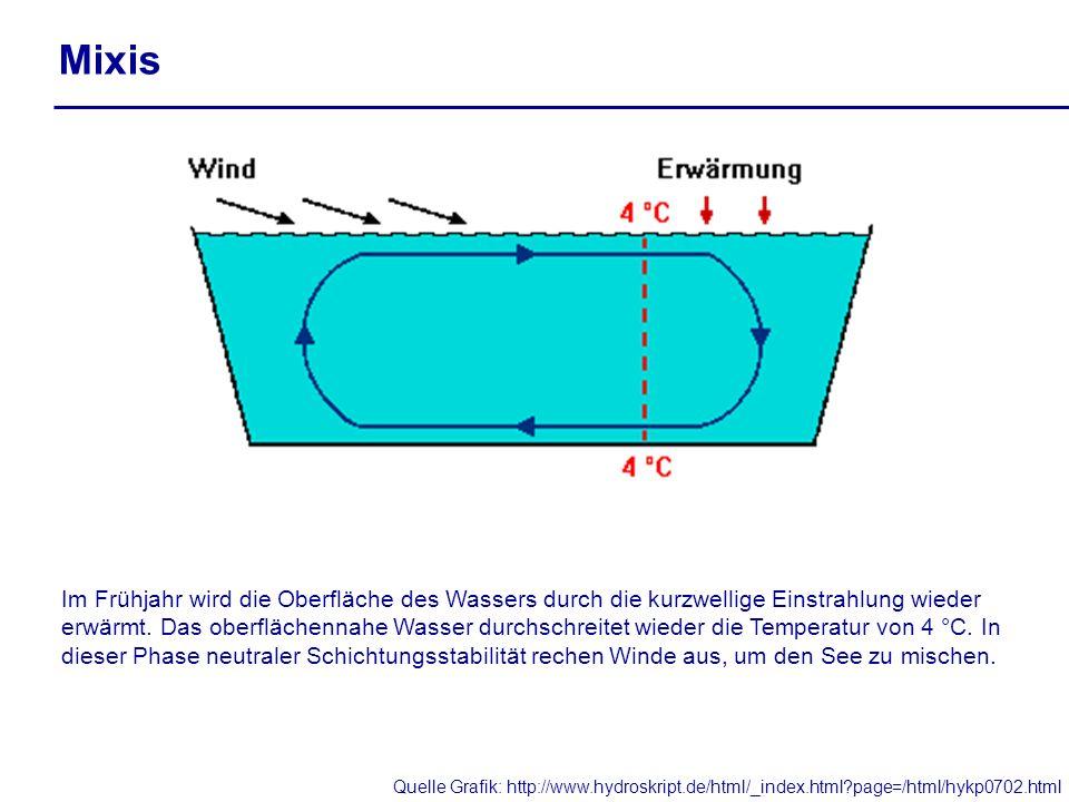 Mixis Im Frühjahr wird die Oberfläche des Wassers durch die kurzwellige Einstrahlung wieder erwärmt. Das oberflächennahe Wasser durchschreitet wieder