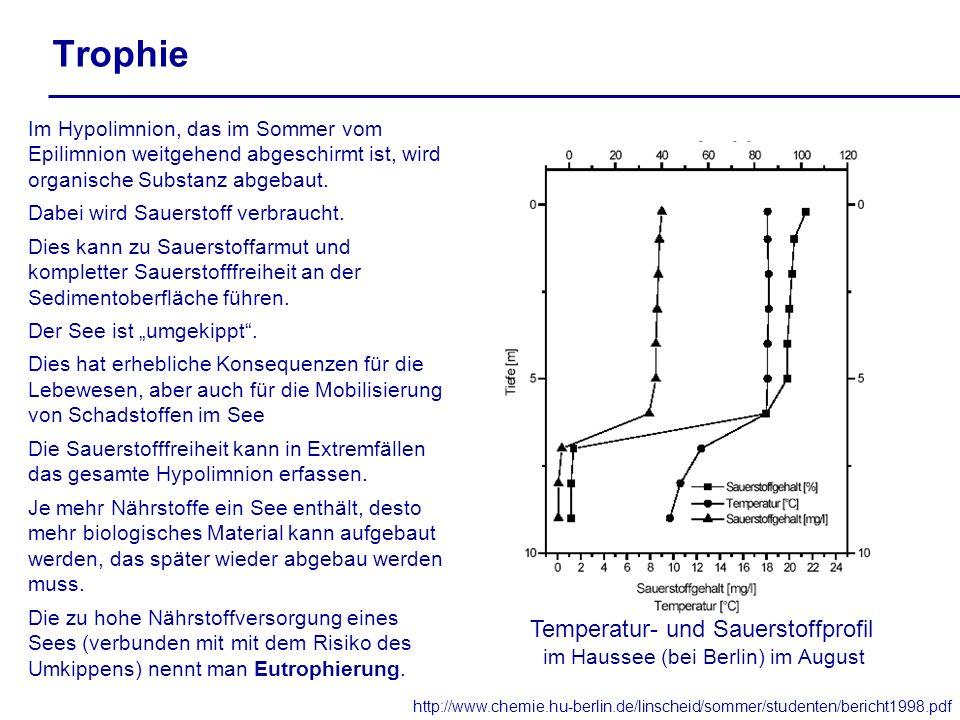 Trophie http://www.chemie.hu-berlin.de/linscheid/sommer/studenten/bericht1998.pdf Temperatur- und Sauerstoffprofil im Haussee (bei Berlin) im August I