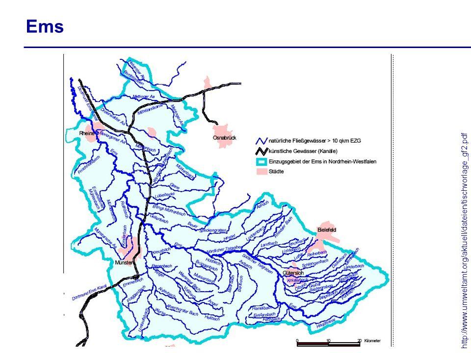Ems http://www.umweltamt.org/aktuell/dateien/tischvorlage_gf2.pdf