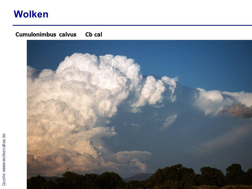 Wolken Cumulonimbus calvus Cb cal Quelle: www.wolkenatlas.de