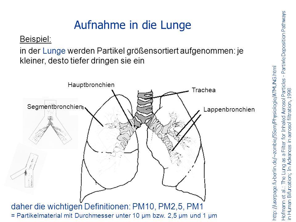 Beispiel: in der Lunge werden Partikel größensortiert aufgenommen: je kleiner, desto tiefer dringen sie ein Aufnahme in die Lunge http://userpage.fu-berlin.de/~zombie/5Sem/Physiologie/ATMUNG.html Hofmann et al.: The Lung as a Filter for Inhaled Aerosol Particles - Partivle Deposition Pathways in Human Bifurcation; In Advances in aerosol filtration, 1998 Segmentbronchien Hauptbronchien Trachea Lappenbronchien daher die wichtigen Definitionen: PM10, PM2,5, PM1 = Partikelmaterial mit Durchmesser unter 10 µm bzw.