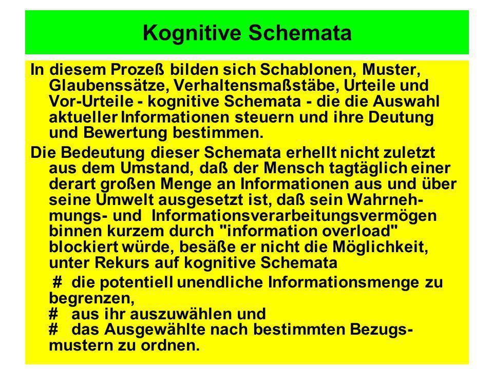 Kognitive Schemata In diesem Prozeß bilden sich Schablonen, Muster, Glaubenssätze, Verhaltensmaßstäbe, Urteile und Vor-Urteile - kognitive Schemata -