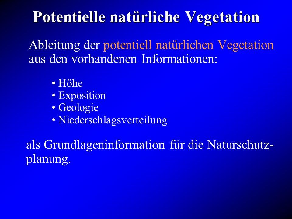 Potentielle natürliche Vegetation Ableitung der potentiell natürlichen Vegetation aus den vorhandenen Informationen: als Grundlageninformation für die