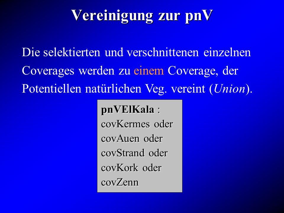 Vereinigung zur pnV Die selektierten und verschnittenen einzelnen Coverages werden zu einem Coverage, der Potentiellen natürlichen Veg. vereint (Union