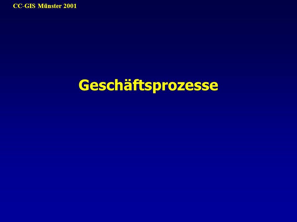 CC-GIS Münster 2001 Geschäftsprozesse
