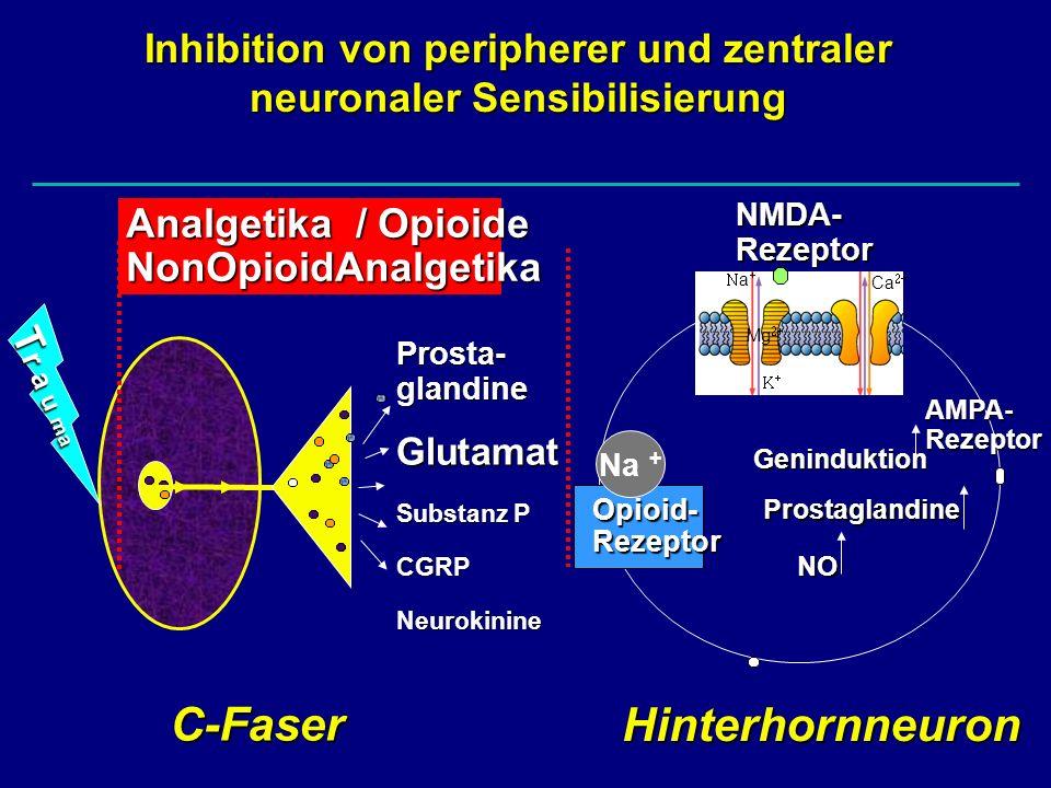 Nichtopioid-Analgetika Im Vergleich zu NSAIDs relativ geringe Nebenwirkungen Analgesie unter Paracetamol deutlich schwächer Cave: Agranulozytose unter Metamizol