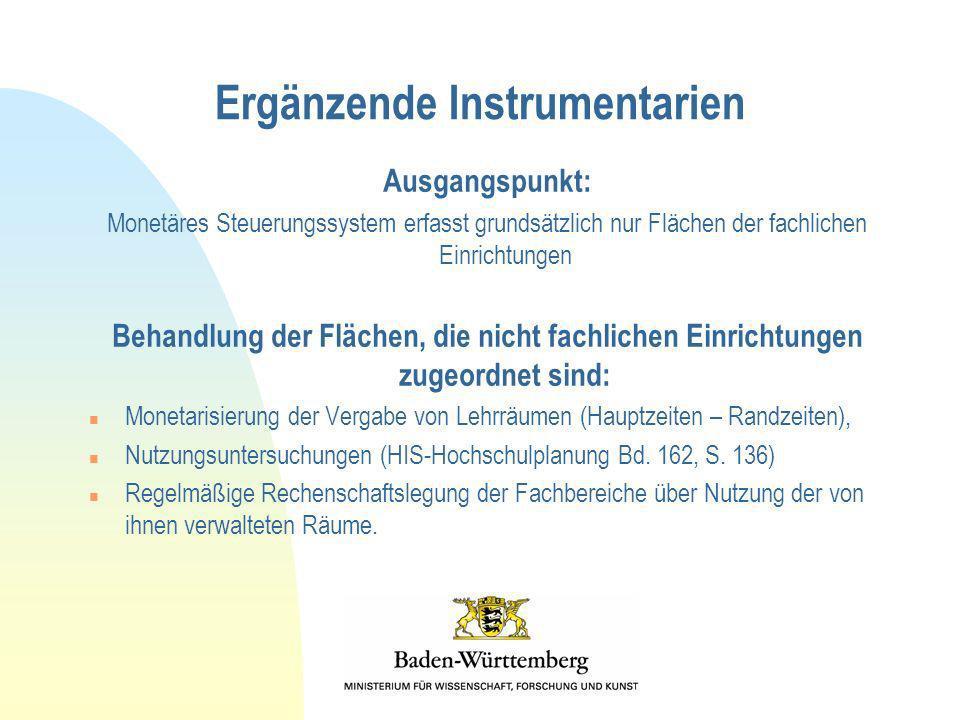 Ergänzende Instrumentarien Ausgangspunkt: Monetäres Steuerungssystem erfasst grundsätzlich nur Flächen der fachlichen Einrichtungen Behandlung der Flä