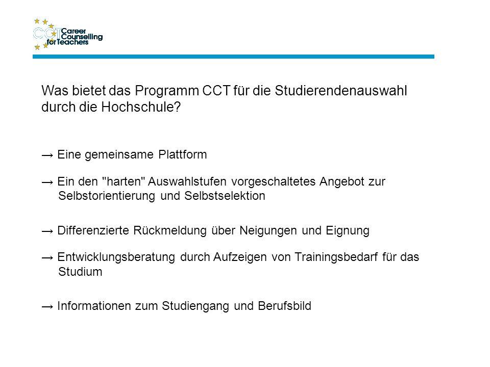 Die Struktur des Internet-Beratungs- programms CCT