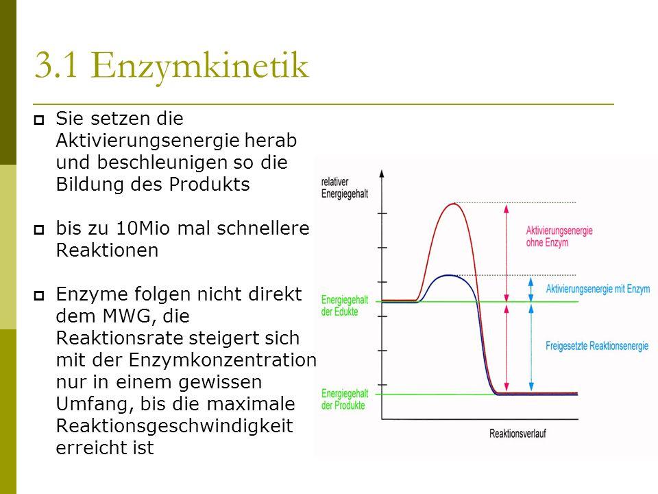Sie setzen die Aktivierungsenergie herab und beschleunigen so die Bildung des Produkts bis zu 10Mio mal schnellere Reaktionen Enzyme folgen nicht direkt dem MWG, die Reaktionsrate steigert sich mit der Enzymkonzentration nur in einem gewissen Umfang, bis die maximale Reaktionsgeschwindigkeit erreicht ist 3.1 Enzymkinetik