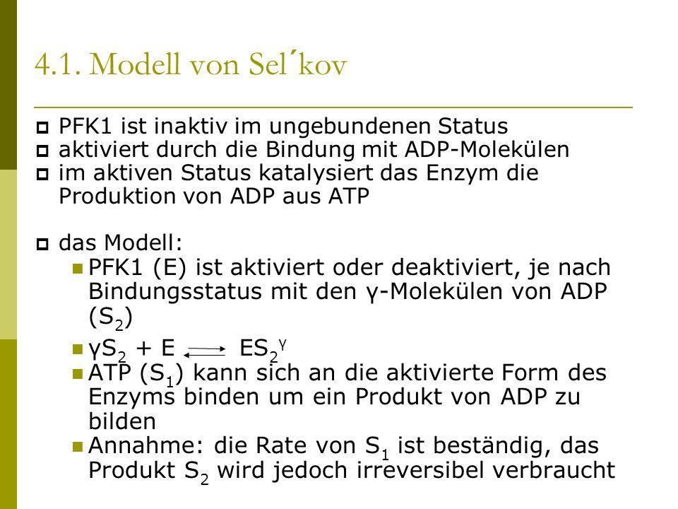 4.1. Modell von Sel´kov PFK1 ist inaktiv im ungebundenen Status aktiviert durch die Bindung mit ADP-Molekülen im aktiven Status katalysiert das Enzym