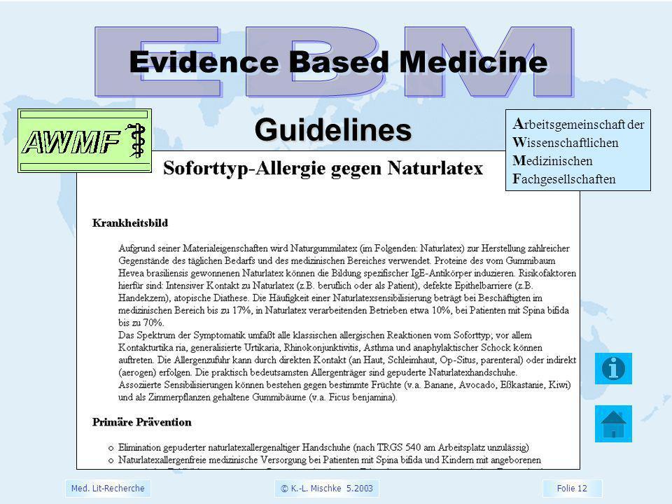 © K.-L. Mischke 5.2003 Folie 12 Med. Lit-Recherche Evidence Based Medicine Guidelines A rbeitsgemeinschaft der W issenschaftlichen M edizinischen F ac