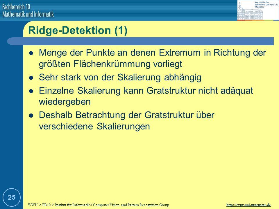 WWU > FB10 > Institut für Informatik > Computer Vision and Pattern Recognition Group http://cvpr.uni-muenster.de 24 Kantendetektion (2) Kantendetektion mit Parameter t = 1, 16, 256