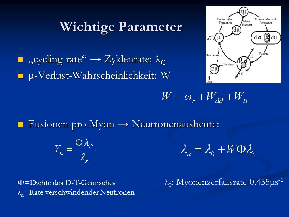 Wichtige Parameter cycling rate Zyklenrate: λ C cycling rate Zyklenrate: λ C μ-Verlust-Wahrscheinlichkeit: W μ-Verlust-Wahrscheinlichkeit: W Fusionen