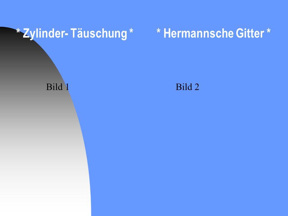 * Zylinder- Täuschung * * Hermannsche Gitter * Bild 1Bild 2