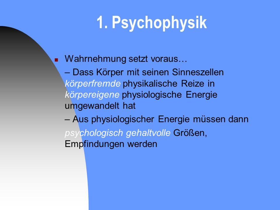 1. Psychophysik Wahrnehmung setzt voraus… – Dass Körper mit seinen Sinneszellen körperfremde physikalische Reize in körpereigene physiologische Energi