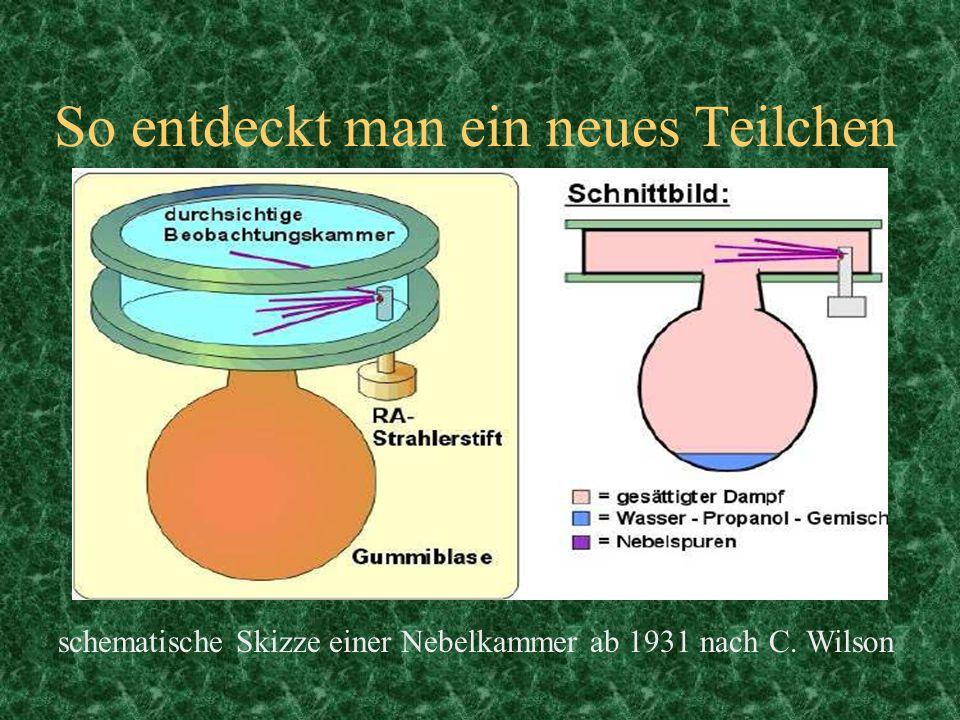So entdeckt man ein neues Teilchen schematische Skizze einer Nebelkammer ab 1931 nach C. Wilson