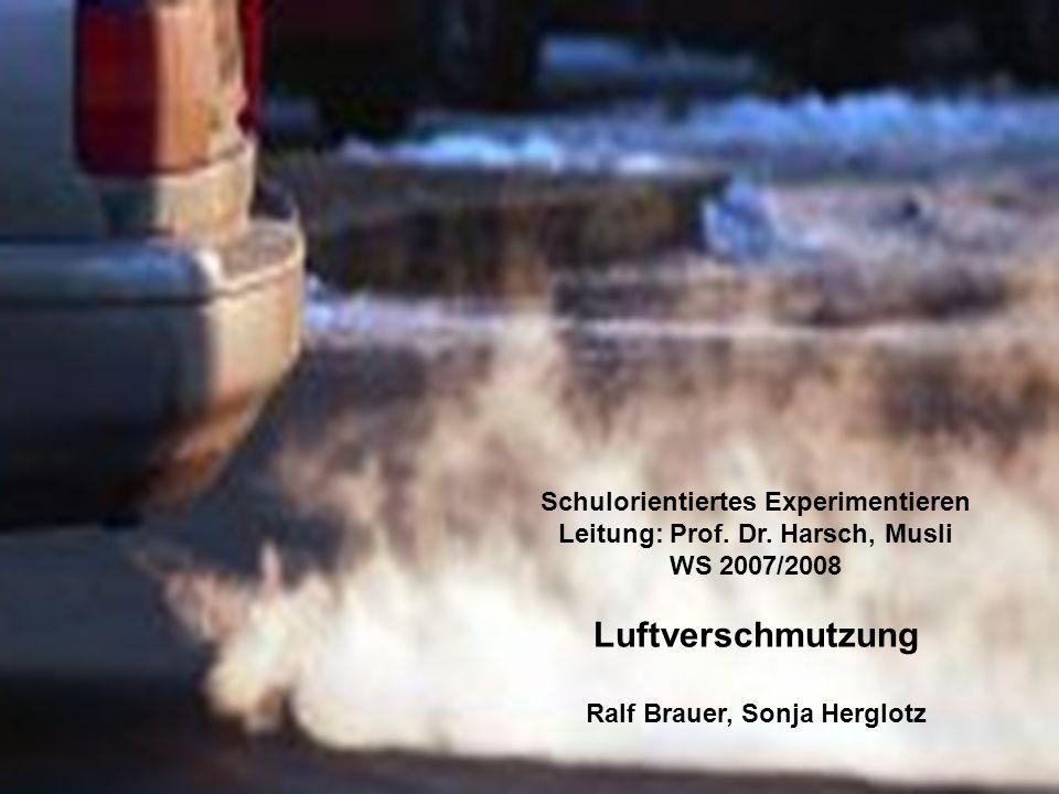 Schulorientiertes Experimentieren Leitung: Prof. Dr. Harsch, Musli WS 2007/2008 Luftverschmutzung Ralf Brauer, Sonja Herglotz