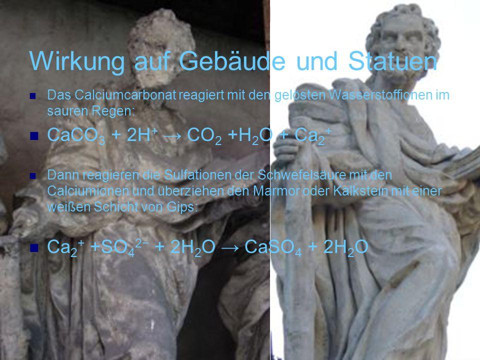 Wirkung auf Gebäude und Statuen Das Calciumcarbonat reagiert mit den gelösten Wasserstoffionen im sauren Regen: CaCO 3 + 2H + CO 2 +H 2 O + Ca 2 + Dan