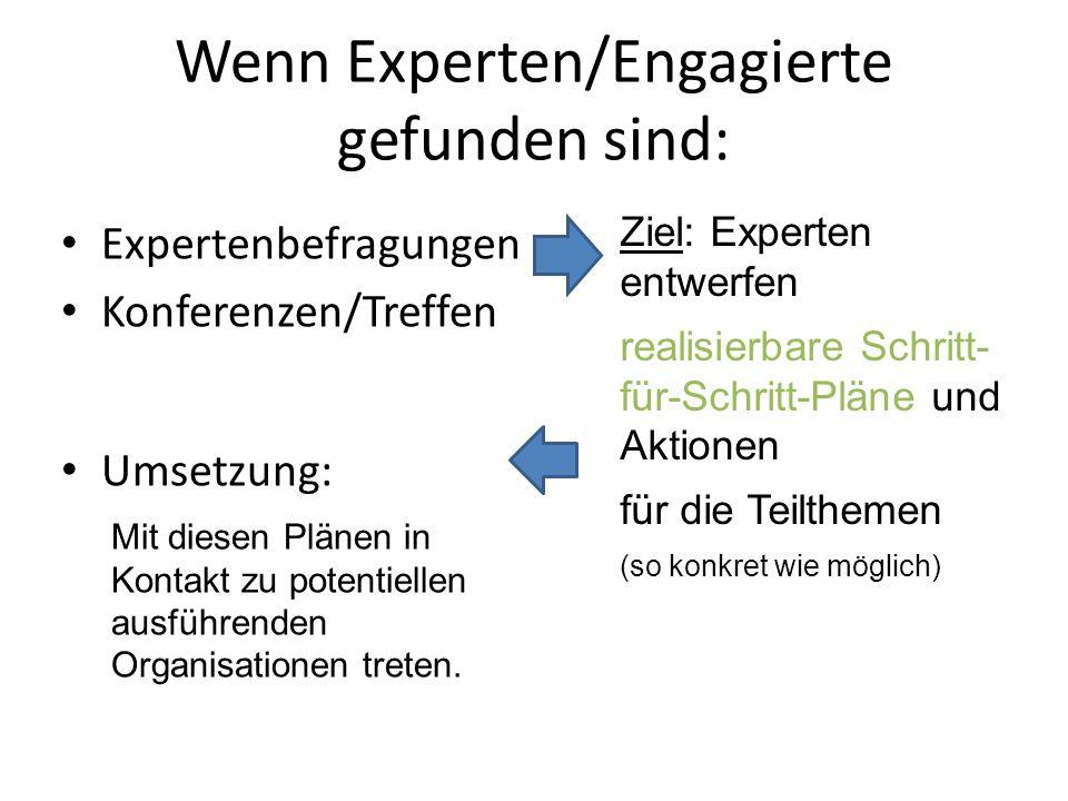 Wenn Experten/Engagierte gefunden sind: Expertenbefragungen Konferenzen/Treffen Umsetzung: Ziel: Experten entwerfen realisierbare Schritt- für-Schritt