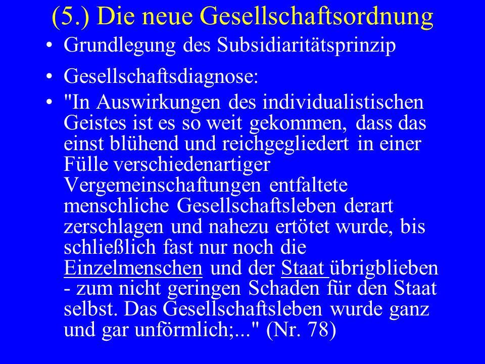 (5.) Die neue Gesellschaftsordnung Grundlegung des Subsidiaritätsprinzip Gesellschaftsdiagnose:
