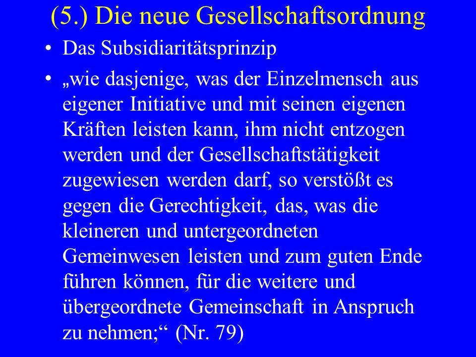 (5.) Die neue Gesellschaftsordnung Das Subsidiaritätsprinzip wie dasjenige, was der Einzelmensch aus eigener Initiative und mit seinen eigenen Kräften