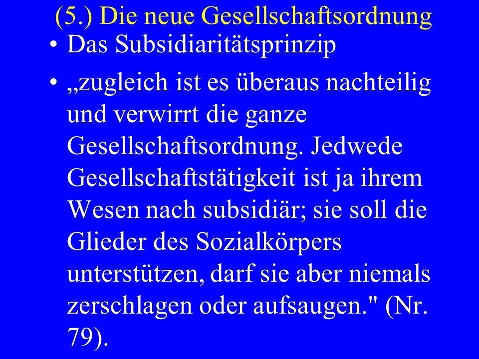 (5.) Die neue Gesellschaftsordnung Das Subsidiaritätsprinzip zugleich ist es überaus nachteilig und verwirrt die ganze Gesellschaftsordnung. Jedwede G