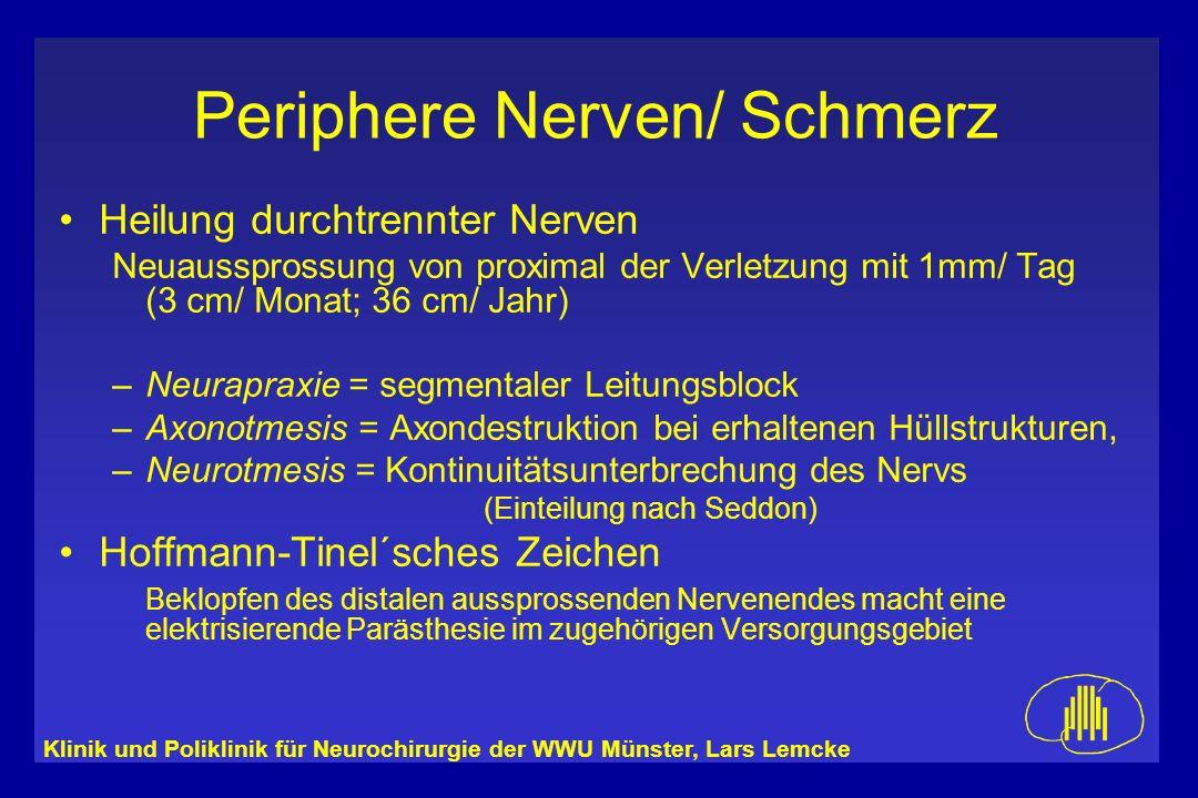 Klinik und Poliklinik für Neurochirurgie der WWU Münster, Lars Lemcke Periphere Nerven/ Schmerz Heilung durchtrennter Nerven Neuaussprossung von proxi