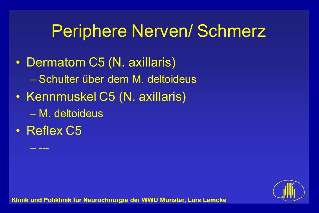Klinik und Poliklinik für Neurochirurgie der WWU Münster, Lars Lemcke Periphere Nerven/ Schmerz Dermatom C5 (N. axillaris) –Schulter über dem M. delto