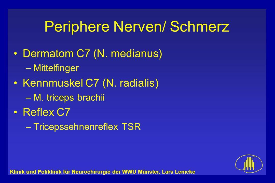 Klinik und Poliklinik für Neurochirurgie der WWU Münster, Lars Lemcke Periphere Nerven/ Schmerz Dermatom C7 (N. medianus) –Mittelfinger Kennmuskel C7