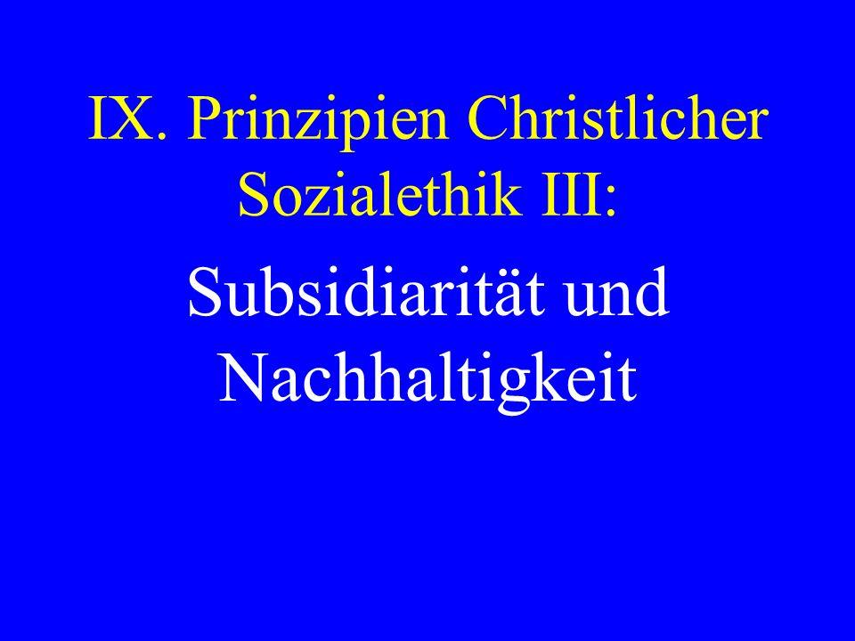 IX. Prinzipien Christlicher Sozialethik III: Subsidiarität und Nachhaltigkeit