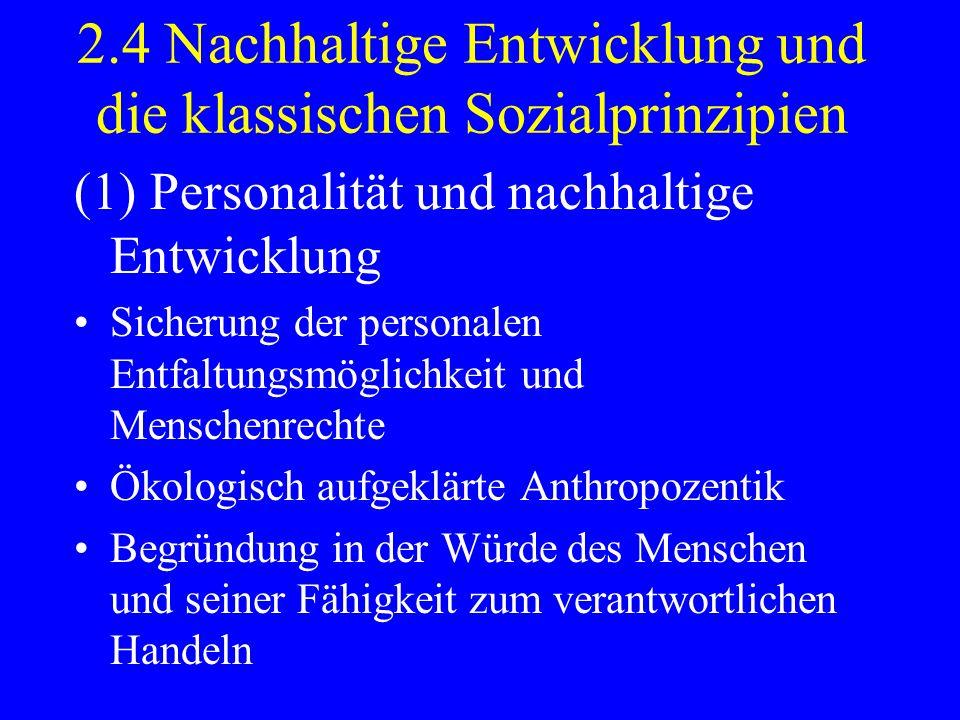 2.4 Nachhaltige Entwicklung und die klassischen Sozialprinzipien (1) Personalität und nachhaltige Entwicklung Sicherung der personalen Entfaltungsmögl