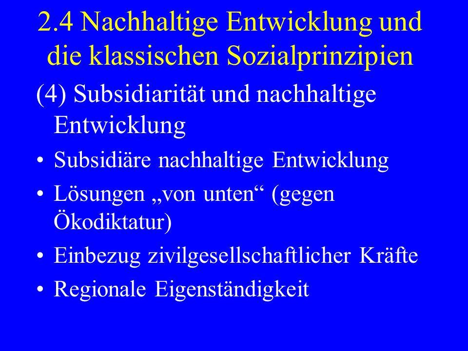 2.4 Nachhaltige Entwicklung und die klassischen Sozialprinzipien (4) Subsidiarität und nachhaltige Entwicklung Subsidiäre nachhaltige Entwicklung Lösu